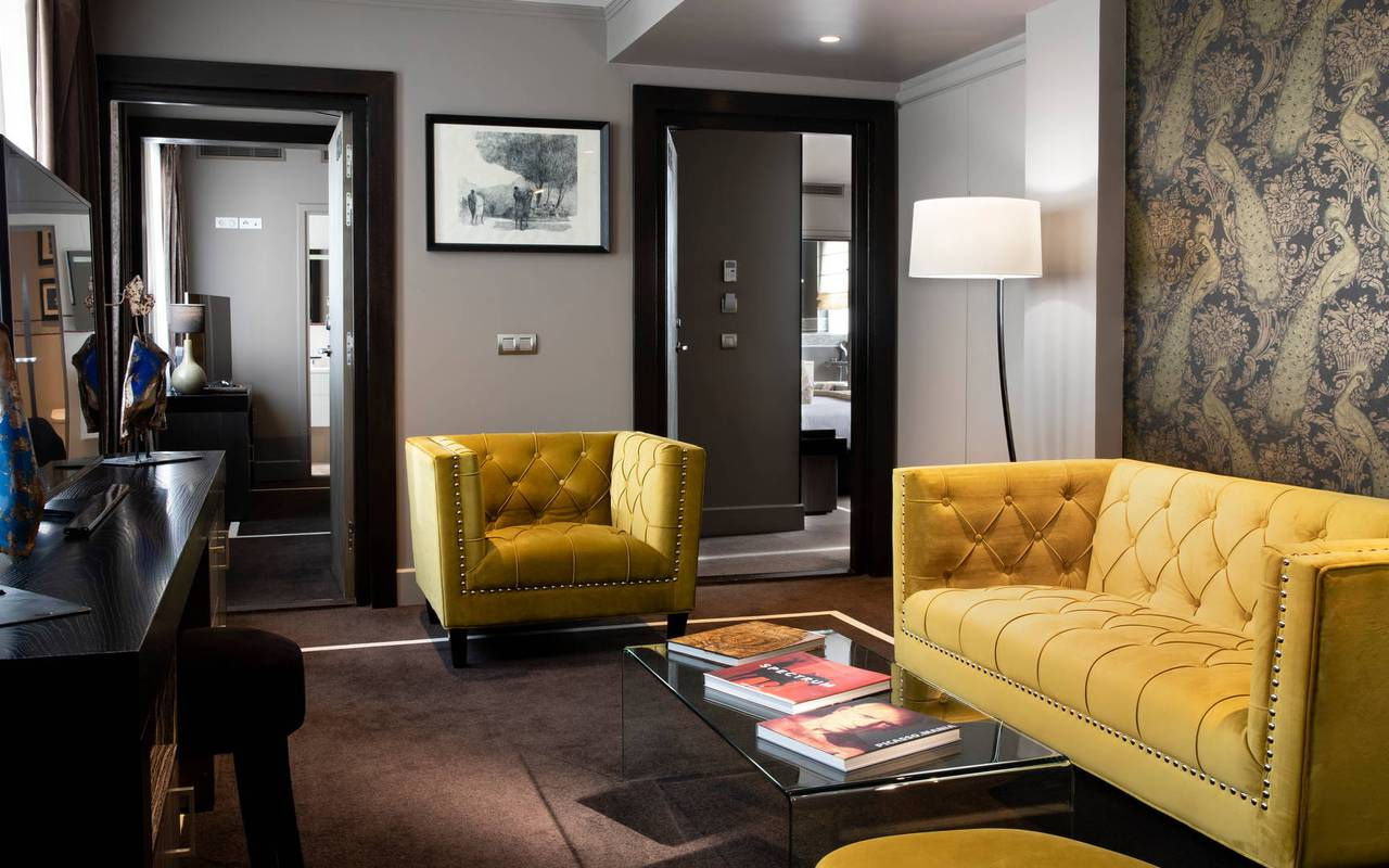 Coin salon avec canapé et fauteuil, hôtel avec vue sur la Tour Eiffel, Juliana Hôtel Paris